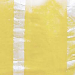 chandi-lemon