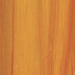 rajasthan-orange