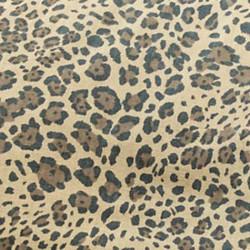 safari-kaki